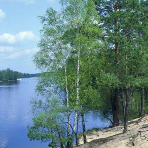 Naturpark Dahme Heideseen