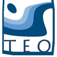 TEO-Logo